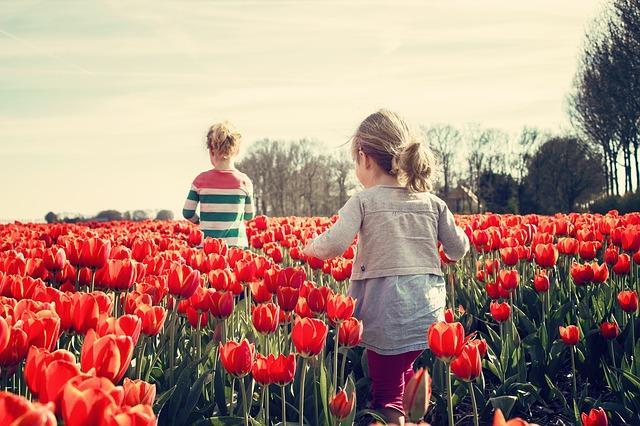 Domek ogrodowy – czy warto go postawić na swojej działce?