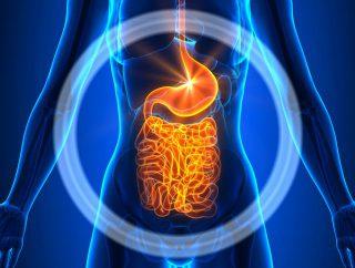 Jak poprawić perystaltykę jelit?